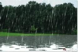 شعر | عطر خوش باران دیشب در هوا پیچید