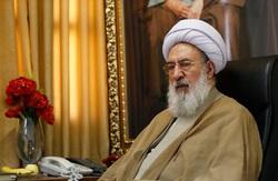 شورای نگهبان بازوی توانای رهبر انقلاب و حافظ حریم شرع است