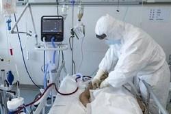 در شبانه روز گذشته ۱۸۷ بیمار کووید۱۹ جان خود را از دست دادند