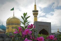 کلیپ  | برکت ایران