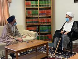 وزیر اطلاعات با آیت الله سبحانی دیدار کرد